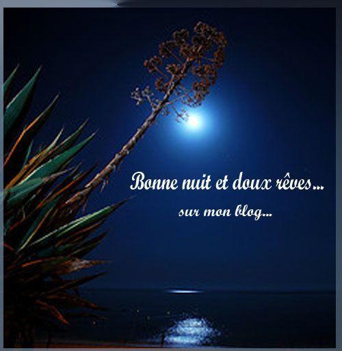 Bonsoir, bonne soirée, bonne nuit